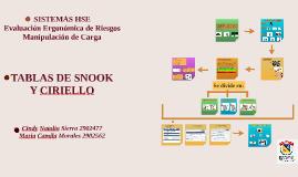 Copy of Copy of TABLAS DE SNOOK