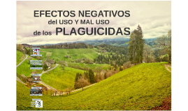 Efectos negativos del uso y mal uso de los plaguicidas