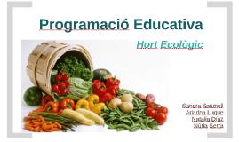 Programació Educativa