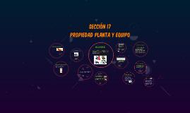 Copy of SECCIÓN 17