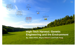 High-Tech Harvest: Genetic Engineering and the Environment