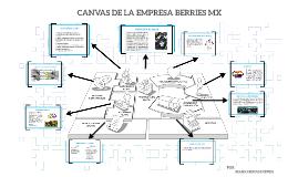 Copy of MODELO CANVAS DE LA EMPRESA DELYFRUTY