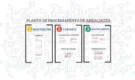 Andalucita