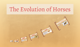 The Evolution of Horses
