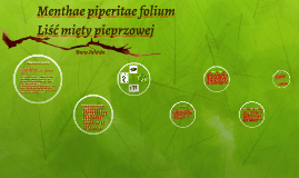 Menthae piperitae folium