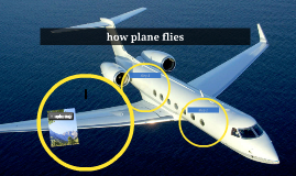 how plane flies