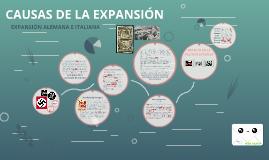 CAUSAS DE LA EXPANSION