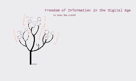 Freedom of Information in the Digital Age