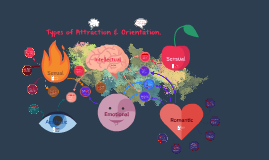 Types of Attraction & Orientation