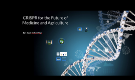 Benefits of CRISPR Towards the Medical and Agricultural Sect