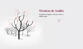 Técnicas de Avalúo