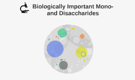 Biologically Important Mono- and Disaccharides