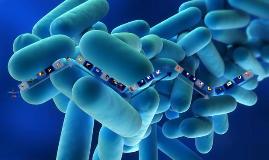 antescedentes historicos de la microbiologia sanitaria