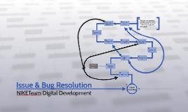 Copy of Dig Dev Issue & Bug Resolution
