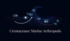 Copy of Crustaceans: Marine Arthropods