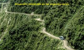 desarrollo sostenible en las organizaciones
