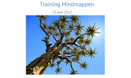 Training Mindmapping