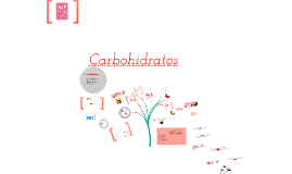 Copy of Carbohidratos