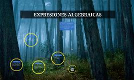 Copy of EXPRESIONES ALGEBRAICAS