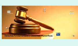 Derechos Fundamentales derechos y  Honoríficos