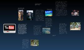 Copy of Latin America Project