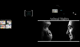 Copy of Animal Rights