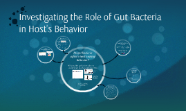 Investigating the Role of Gut Bacteria in Eating Behavior