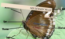 SEI ELA LESSON PLAN
