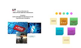 MANAGEMENT DES RISQUES DES SYSTEMES D'INFORMATION :