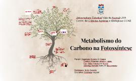 Copy of Metabolismo do Carbono na Fotossíntese
