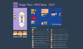 Stage tice Sens