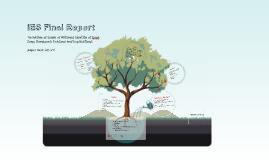 IES Final Report