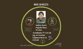 Andrés Kevin Pajuelo Vivar