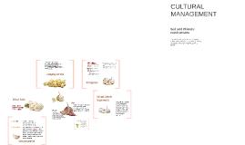 Copy of Robust Garlic