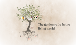 The golden ration in the living world