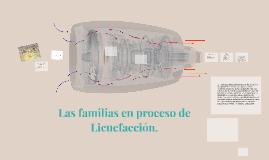 Las familias en proceso de Licuefacción.