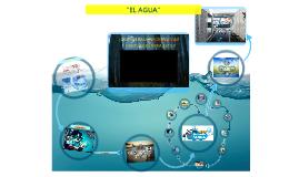 """""""El Agua"""""""