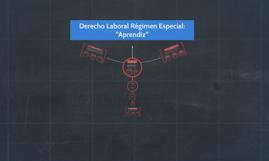 """Derecho Laboral Régimen Especial: """"Aprendiz"""""""