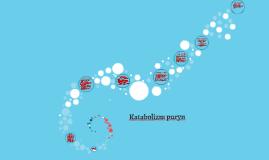 Katabolizm puryn