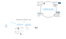 Memoria Anual 2013. Plataforma de Infancia.
