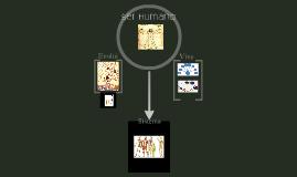 Evolução e organização estrutural dos seres vivos