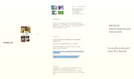 Mediakunde DT 1 (4 sept. 2013)