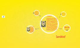 Copy of Sunshine