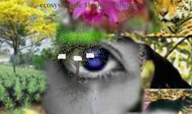 ecosystem de Mexico  y filipinas