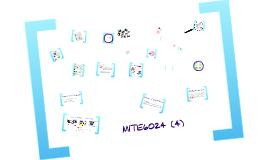 MITE6024_2015_(4)