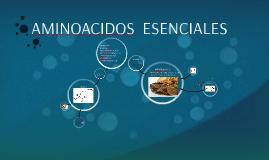 Copy of AMINOACIDOS  ESENCIALES