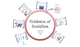 Copy of Evidence of Evolution