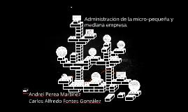 Administración de la micro-pequeña y mediana empresa.