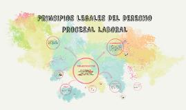 PRINCIPIOS LEGALES DEL DERECHO PROCESAL LABORAL