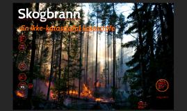 Skogbrannområde